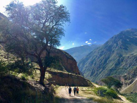 Wanderung im Colca Tal mit Green Peru Adventures